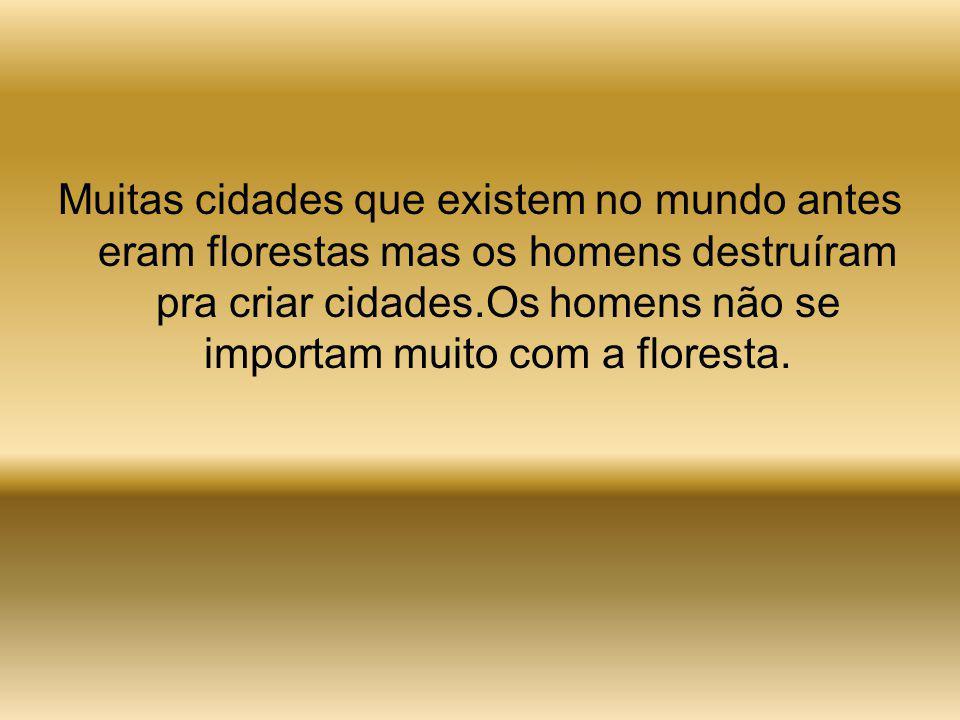 O Brasil apresenta o maior índice de desmatamento do planeta. Florestas que ocupavam área do tamanho do estado de Sergipe, já foram destruídas.