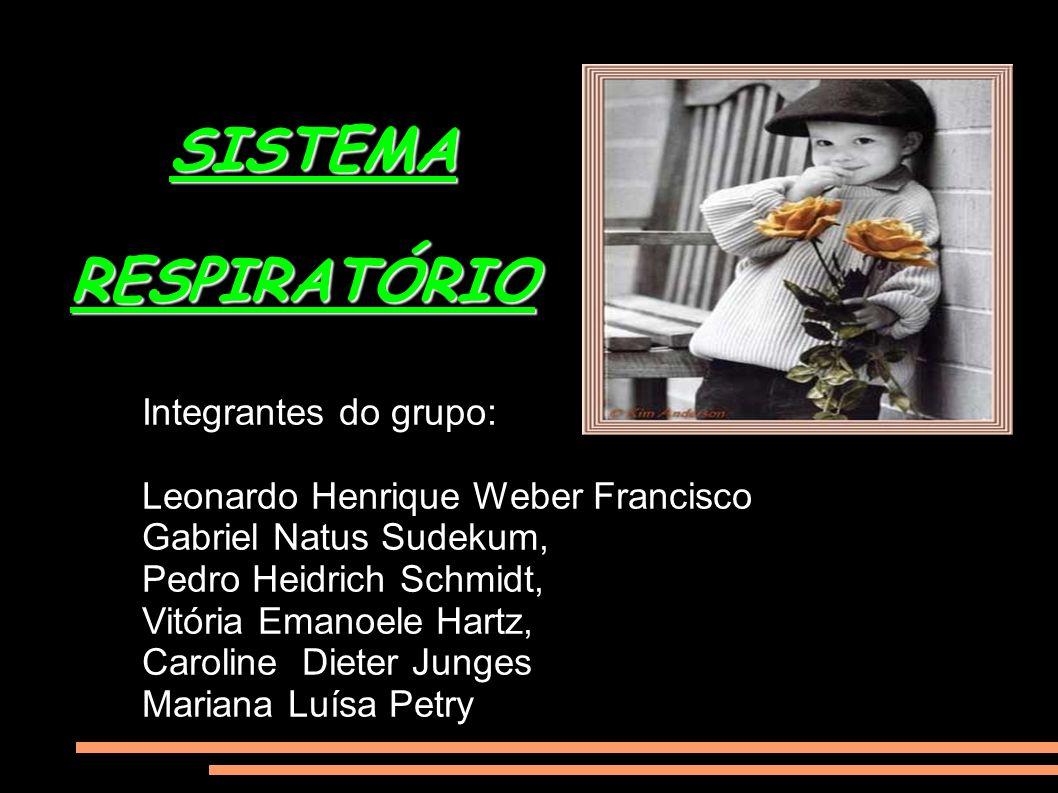Integrantes do grupo: Leonardo Henrique Weber Francisco Gabriel Natus Sudekum, Pedro Heidrich Schmidt, Vitória Emanoele Hartz, Caroline Dieter Junges