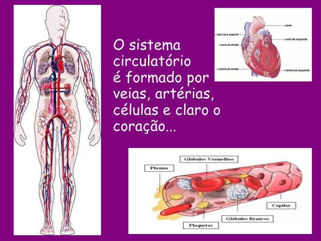 O sistema circulatório é formado por veias, artérias, células e claro o coração...