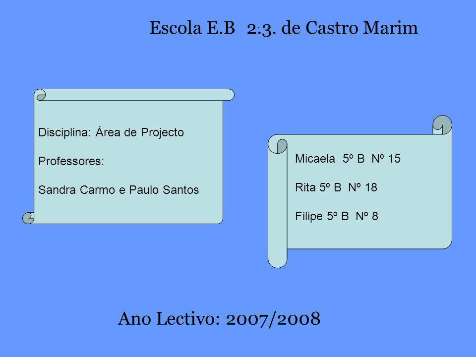 Disciplina: Área de Projecto Professores: Sandra Carmo e Paulo Santos Micaela 5º B Nº 15 Rita 5º B Nº 18 Filipe 5º B Nº 8 Escola E.B. 2.3. de Castro M