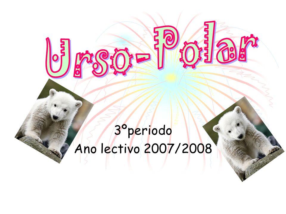 3ºperiodo Ano lectivo 2007/2008