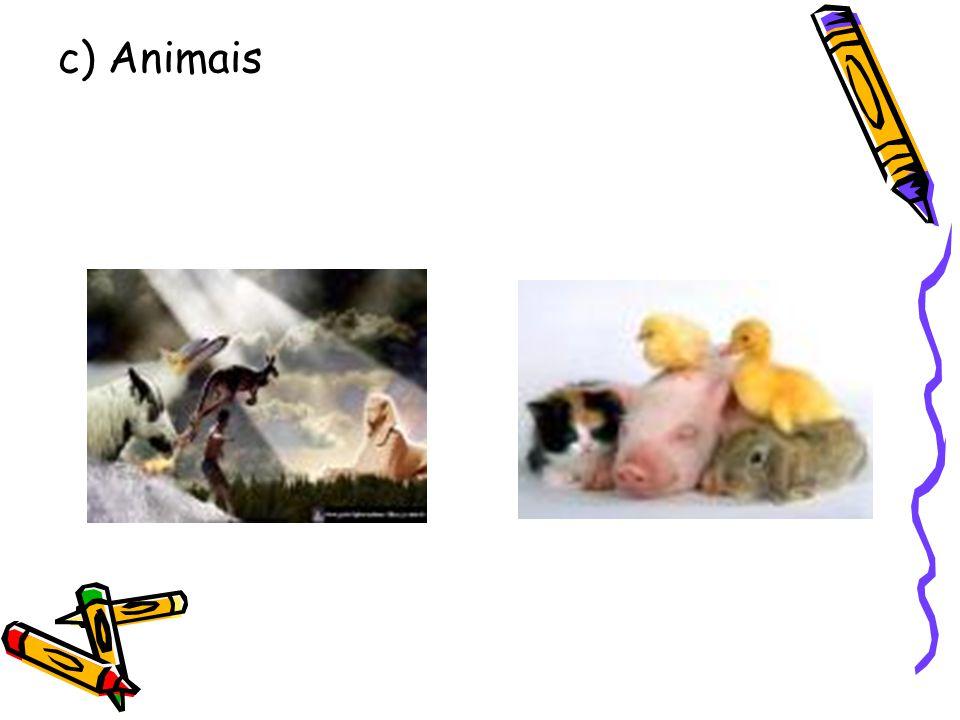 c) Animais
