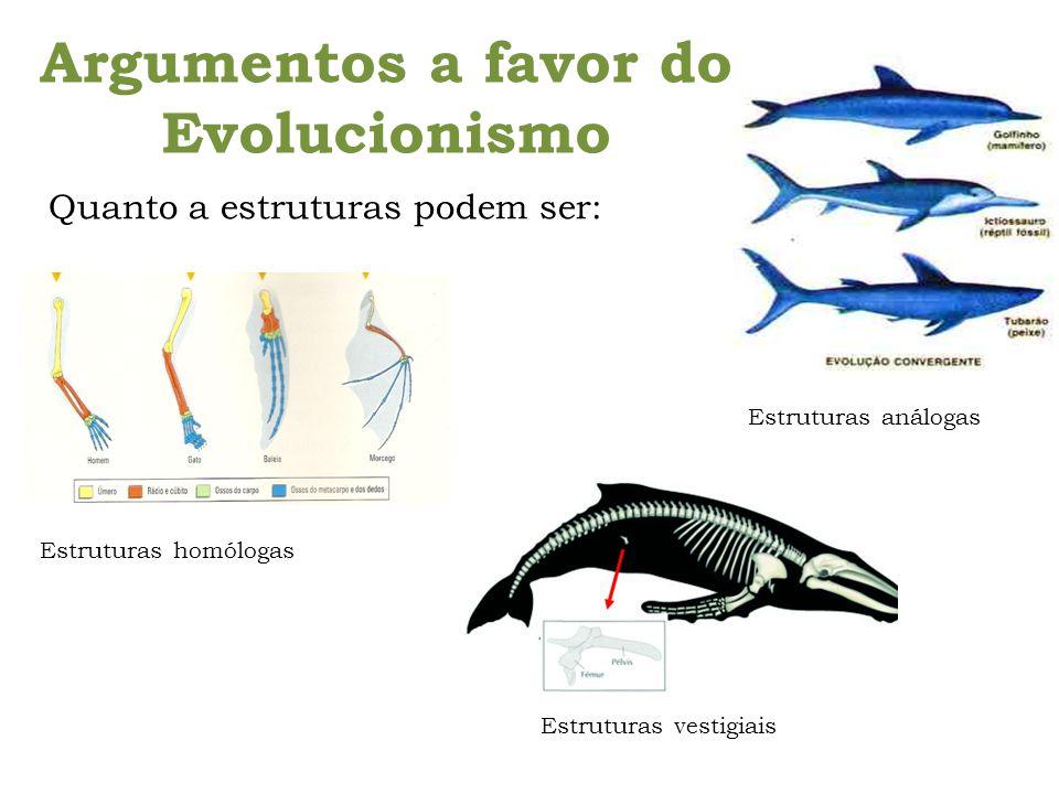 Argumentos a favor do Evolucionismo Estruturas análogas Estruturas vestigiais Estruturas homólogas Quanto a estruturas podem ser: