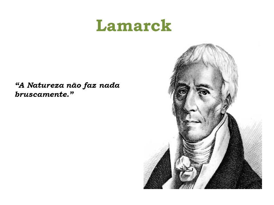 Lamarck A Natureza não faz nada bruscamente.