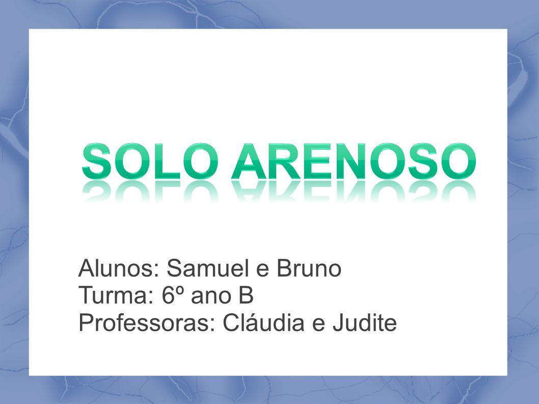 Alunos: Samuel e Bruno Turma: 6º ano B Professoras: Cláudia e Judite