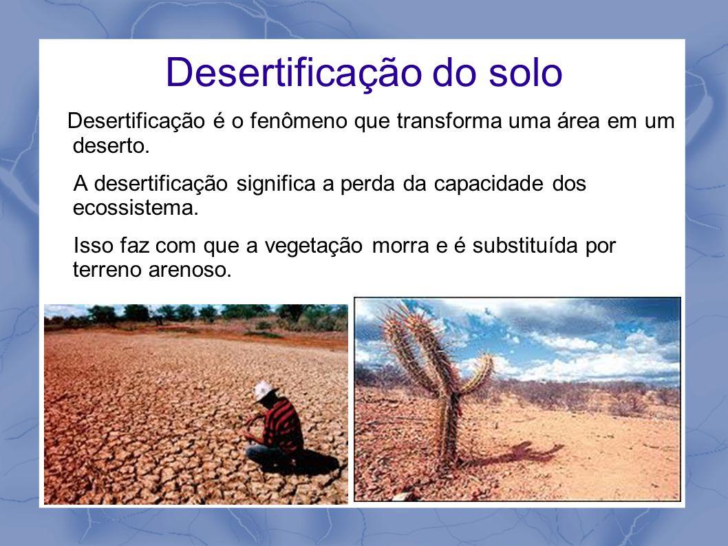 Desertificação do solo Desertificação é o fenômeno que transforma uma área em um deserto. A desertificação significa a perda da capacidade dos ecossis