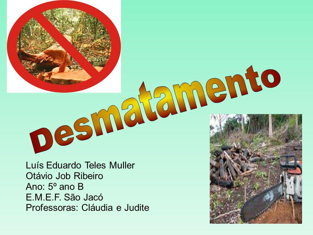 Luís Eduardo Teles Muller Otávio Job Ribeiro Ano: 5º ano B E.M.E.F. São Jacó Professoras: Cláudia e Judite