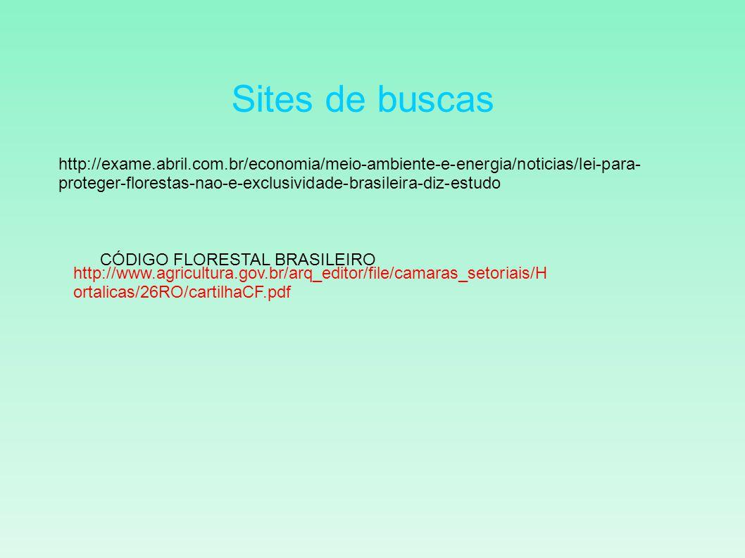 Sites de buscas http://exame.abril.com.br/economia/meio-ambiente-e-energia/noticias/lei-para- proteger-florestas-nao-e-exclusividade-brasileira-diz-es