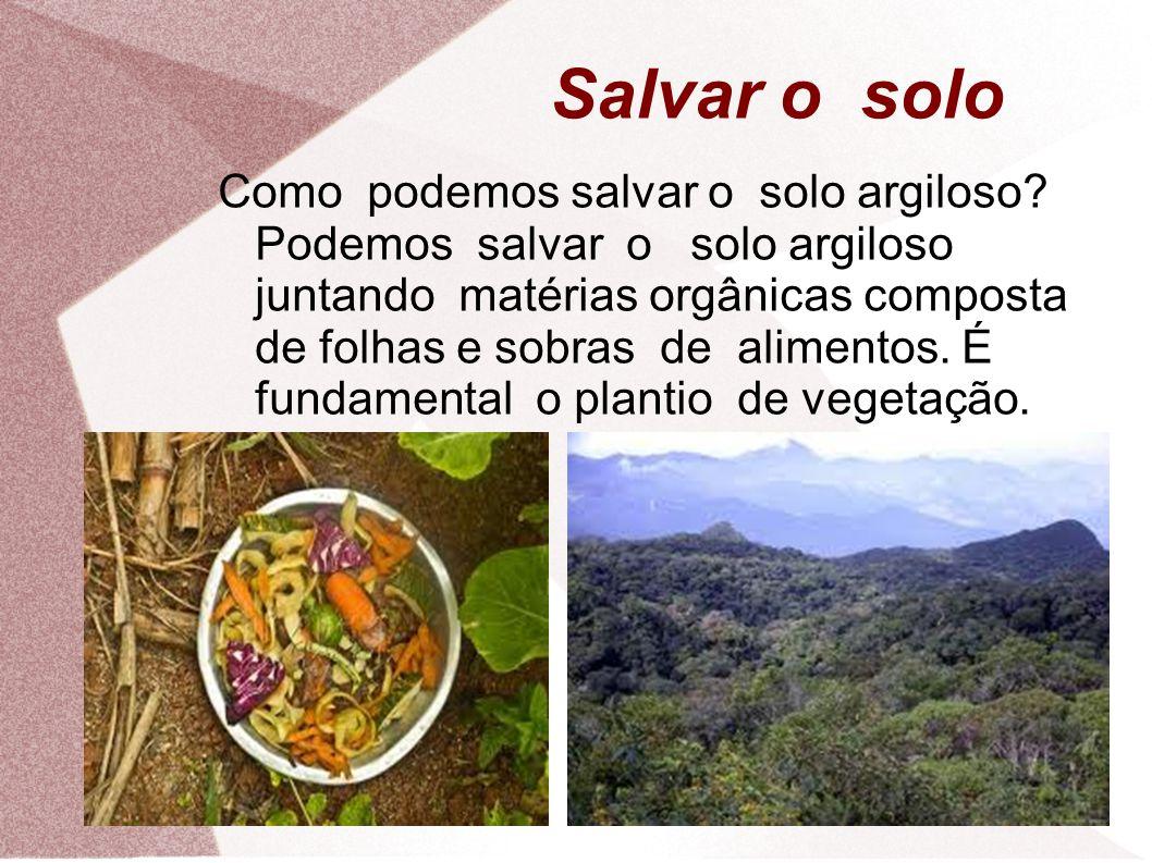 Salvar o solo Como podemos salvar o solo argiloso.