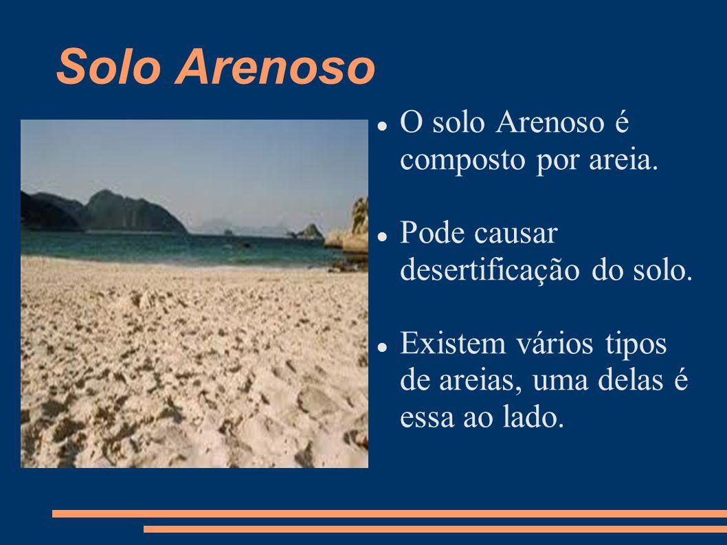 Solo Arenoso O solo Arenoso é composto por areia. Pode causar desertificação do solo. Existem vários tipos de areias, uma delas é essa ao lado.