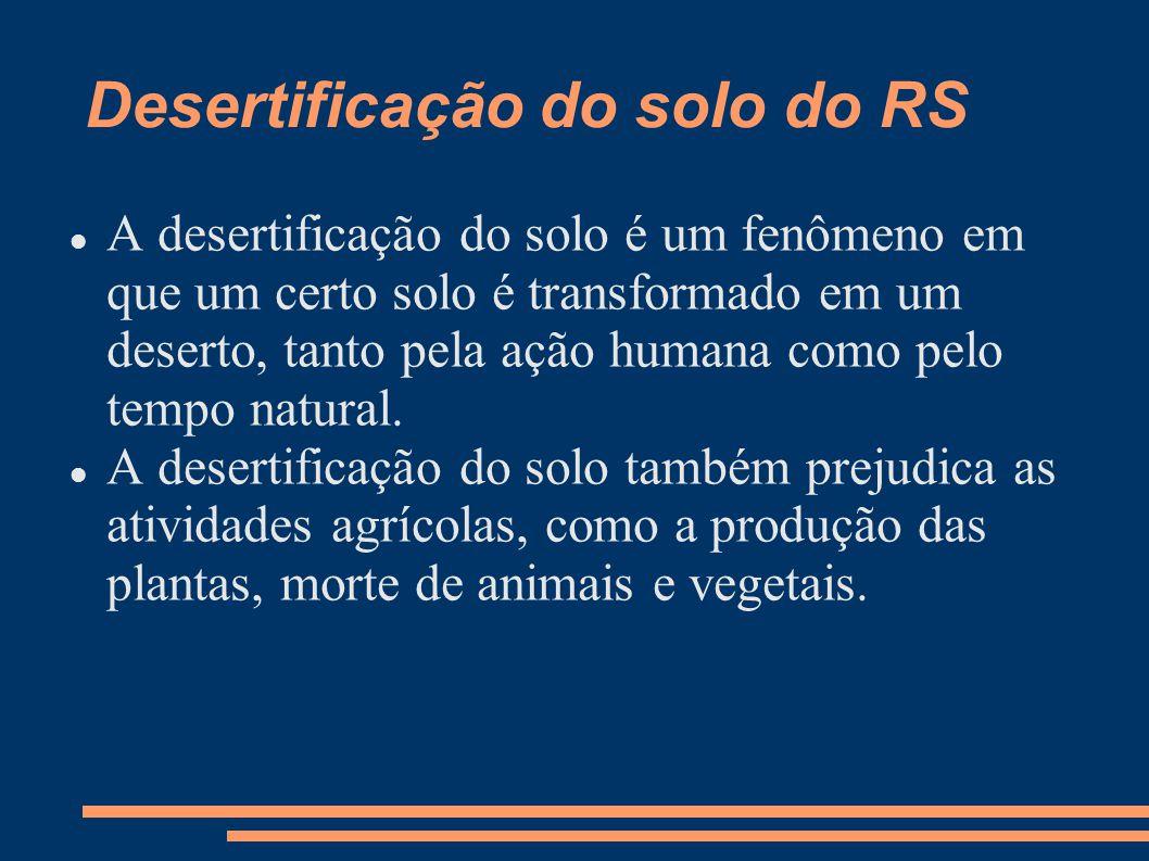 Desertificação do solo do RS A desertificação do solo é um fenômeno em que um certo solo é transformado em um deserto, tanto pela ação humana como pel