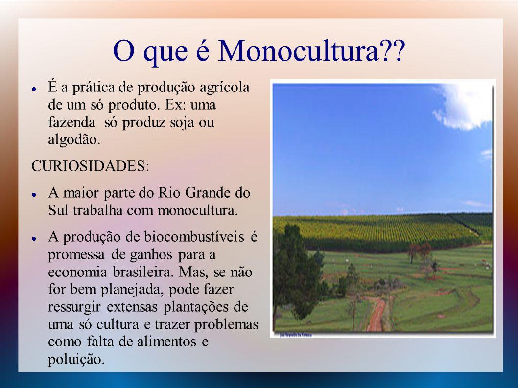 O que é Monocultura?? É a prática de produção agrícola de um só produto. Ex: uma fazenda só produz soja ou algodão. CURIOSIDADES: A maior parte do Rio
