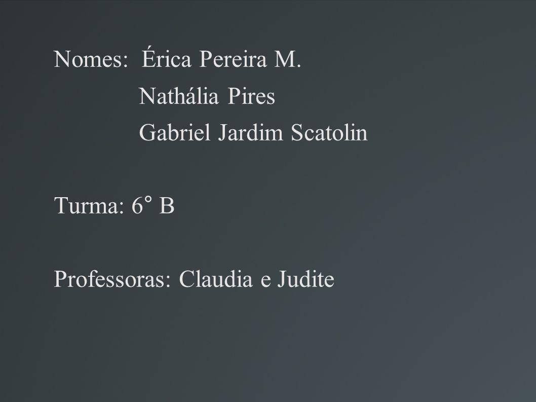 Nomes: Érica Pereira M. Nathália Pires Gabriel Jardim Scatolin Turma: 6° B Professoras: Claudia e Judite