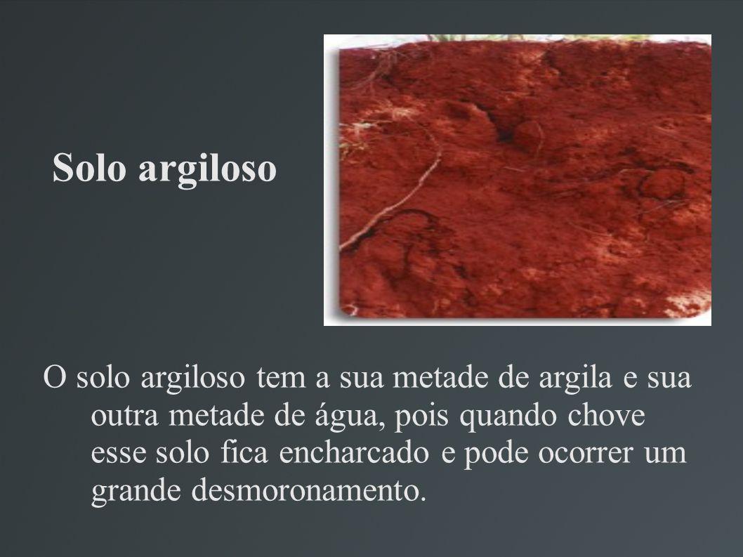 Solo argiloso O solo argiloso tem a sua metade de argila e sua outra metade de água, pois quando chove esse solo fica encharcado e pode ocorrer um grande desmoronamento.