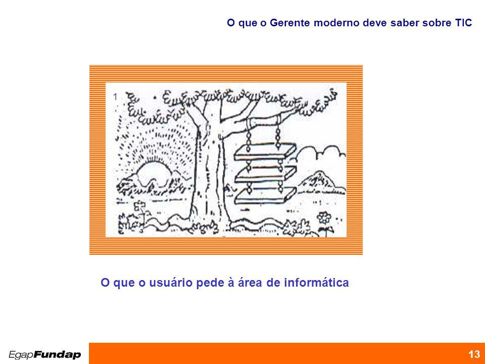 Programa de Desenvolvimento Gerencial 13 O que o usuário pede à área de informática 1 O que o Gerente moderno deve saber sobre TIC