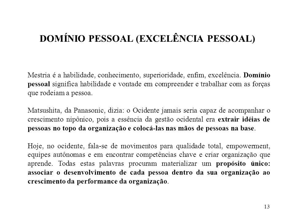 13 DOMÍNIO PESSOAL (EXCELÊNCIA PESSOAL) Mestria é a habilidade, conhecimento, superioridade, enfim, excelência.