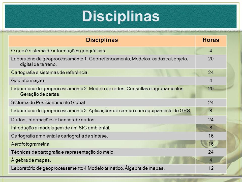 Disciplinas Horas O que é sistema de informações geográficas.4 Laboratório de geoprocessamento 1. Georrefenciamento; Modelos: cadastral, objeto, digit