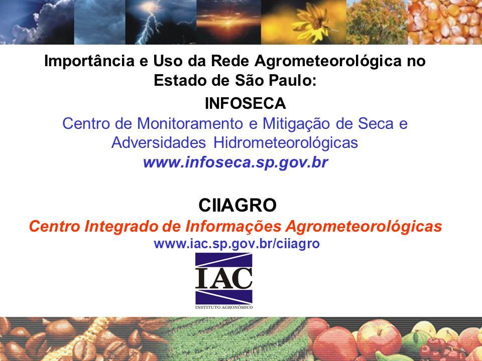 Perdas econômicas devido à Deficiência Hídrica no Estado de São Paulo Equivale a custos médios entre 9,8% e 14,8% para o agricultor Fonte: IEA 2004 (Valores corrigidos para 2004)