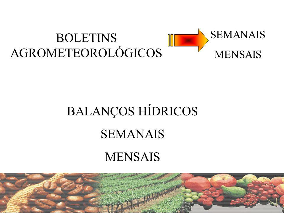 BOLETINS AGROMETEOROLÓGICOS SEMANAIS MENSAIS BALANÇOS HÍDRICOS SEMANAIS MENSAIS