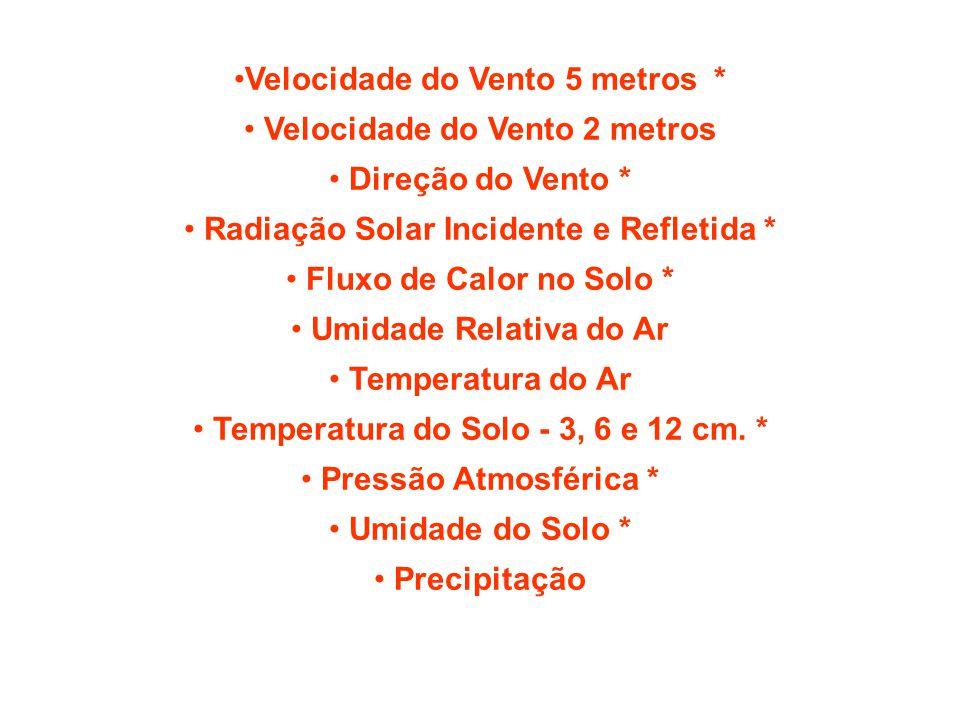 Velocidade do Vento 5 metros* Velocidade do Vento 2 metros Direção do Vento * Radiação Solar Incidente e Refletida * Fluxo de Calor no Solo * Umidade