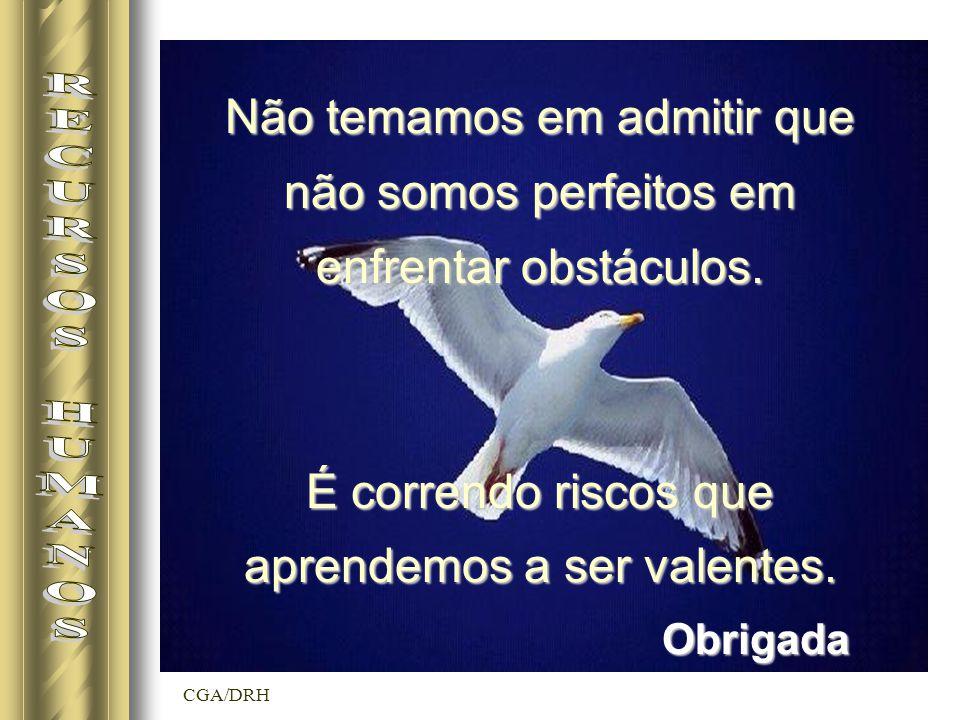 CGA/DRH Obrigada Não temamos em admitir que não somos perfeitos em enfrentar obstáculos.
