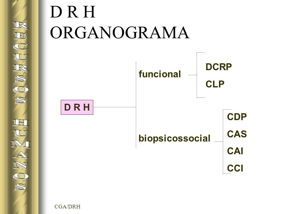 CGA/DRH D R H ORGANOGRAMA D R H funcional biopsicossocial DCRP CLP CDP CAS CAI CCI