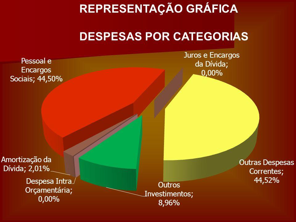 REPRESENTAÇÃO GRÁFICA DESPESAS POR CATEGORIAS