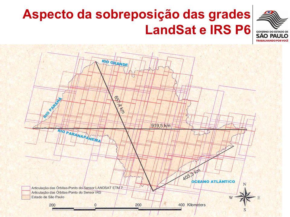 Aspecto da sobreposição das grades LandSat e IRS P6