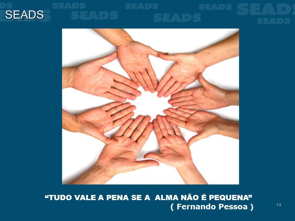 14 SEADS TUDO VALE A PENA SE A ALMA NÃO É PEQUENA ( Fernando Pessoa )