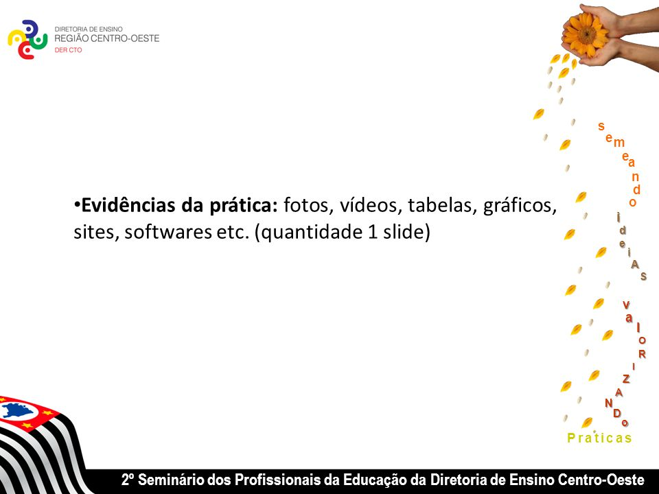 2º Seminário dos Profissionais da Educação da Diretoria de Ensino Centro-Oeste Praticas Evidências da prática: fotos, vídeos, tabelas, gráficos, sites, softwares etc.