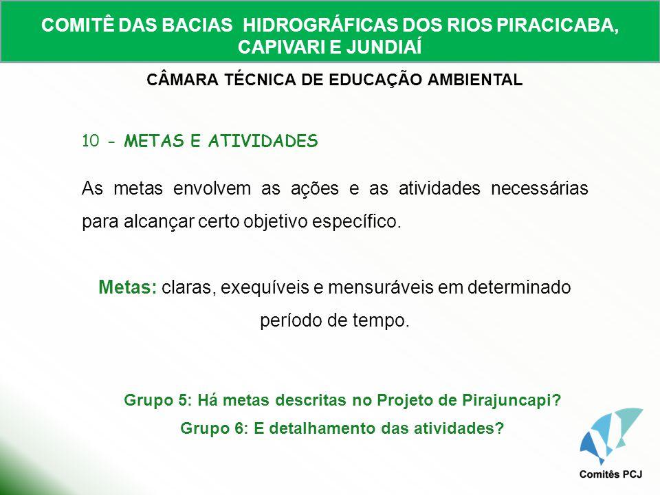 COMITÊ DAS BACIAS HIDROGRÁFICAS DOS RIOS PIRACICABA, CAPIVARI E JUNDIAÍ CÂMARA TÉCNICA DE EDUCAÇÃO AMBIENTAL 10 - METAS E ATIVIDADES As metas envolvem