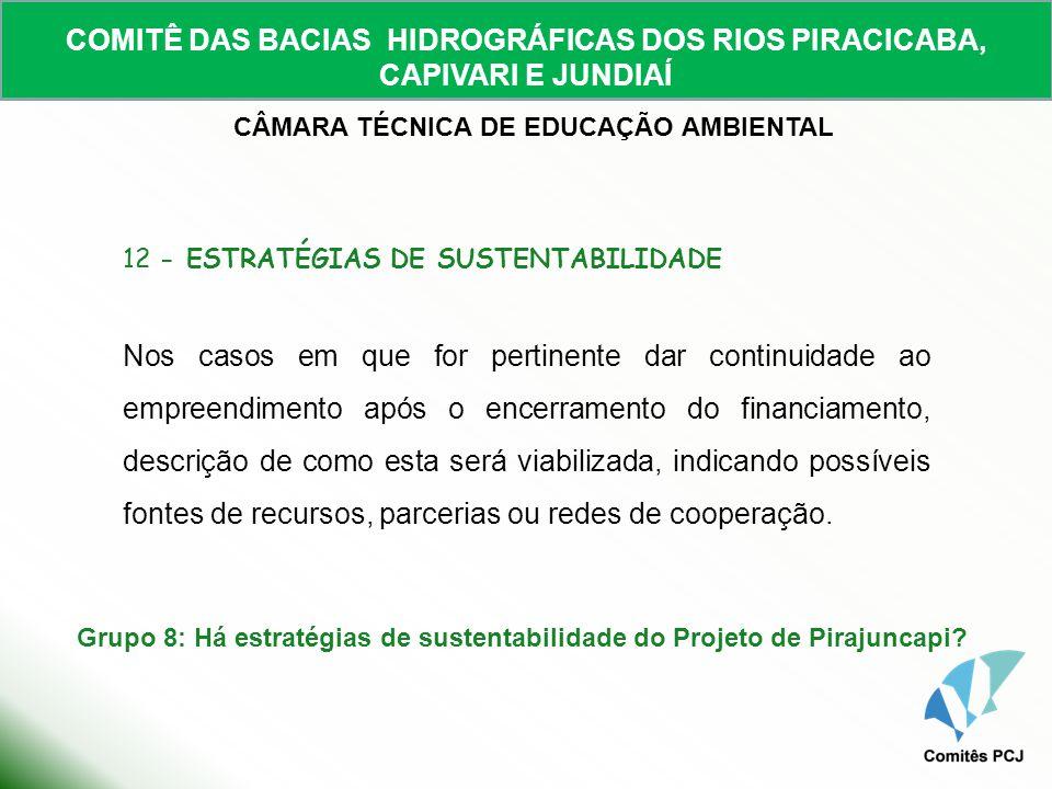 COMITÊ DAS BACIAS HIDROGRÁFICAS DOS RIOS PIRACICABA, CAPIVARI E JUNDIAÍ CÂMARA TÉCNICA DE EDUCAÇÃO AMBIENTAL 12 - ESTRATÉGIAS DE SUSTENTABILIDADE Nos