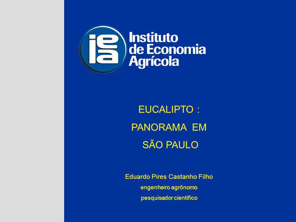 EUCALIPTO : PANORAMA EM SÃO PAULO Eduardo Pires Castanho Filho engenheiro agrônomo pesquisador científico