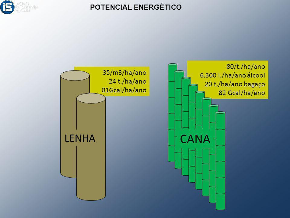 35/m3/ha/ano 24 t./ha/ano 81Gcal/ha/ano 80/t./ha/ano 6.300 l./ha/ano álcool 20 t./ha/ano bagaço 82 Gcal/ha/ano POTENCIAL ENERGÉTICO LENHA CANA