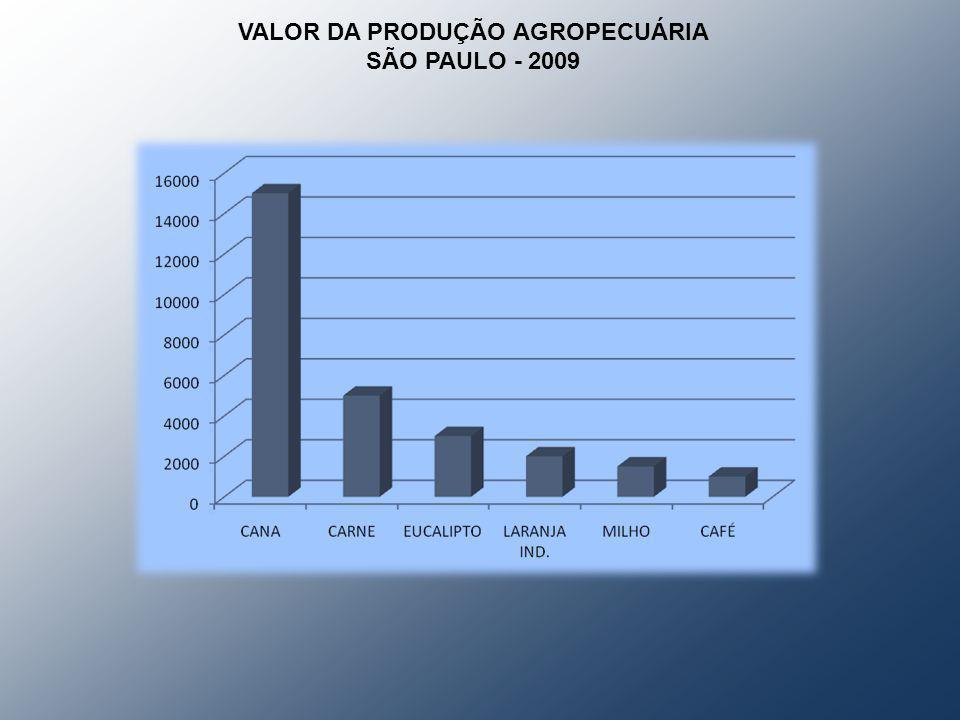 VALOR DA PRODUÇÃO AGROPECUÁRIA SÃO PAULO - 2009