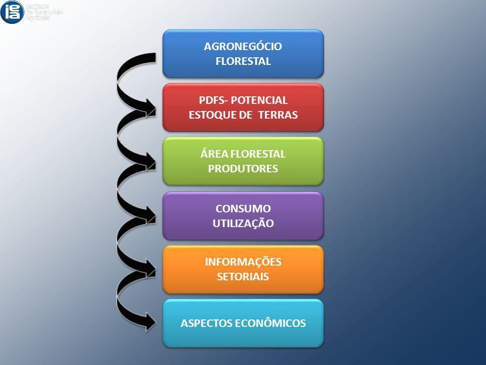 AGRONEGÓCIO FLORESTAL AGRONEGÓCIO FLORESTAL PDFS- POTENCIAL ESTOQUE DE TERRAS PDFS- POTENCIAL ESTOQUE DE TERRAS ÁREA FLORESTAL PRODUTORES ÁREA FLOREST