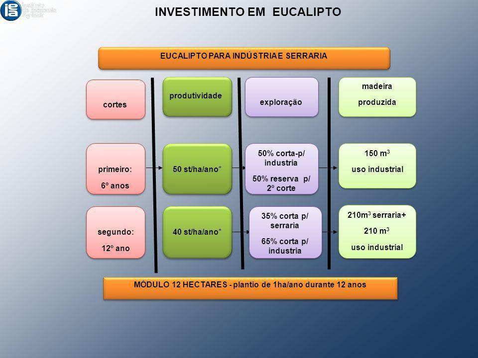 produtividade 50 st/ha/ano* 40 st/ha/ano* 50% corta-p/ industria 50% reserva p/ 2º corte 50% corta-p/ industria 50% reserva p/ 2º corte 35% corta p/ s