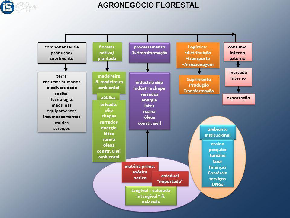 componentes de produção/ suprimento componentes de produção/ suprimento floresta nativa/ plantada floresta nativa/ plantada processamento 1ª transform