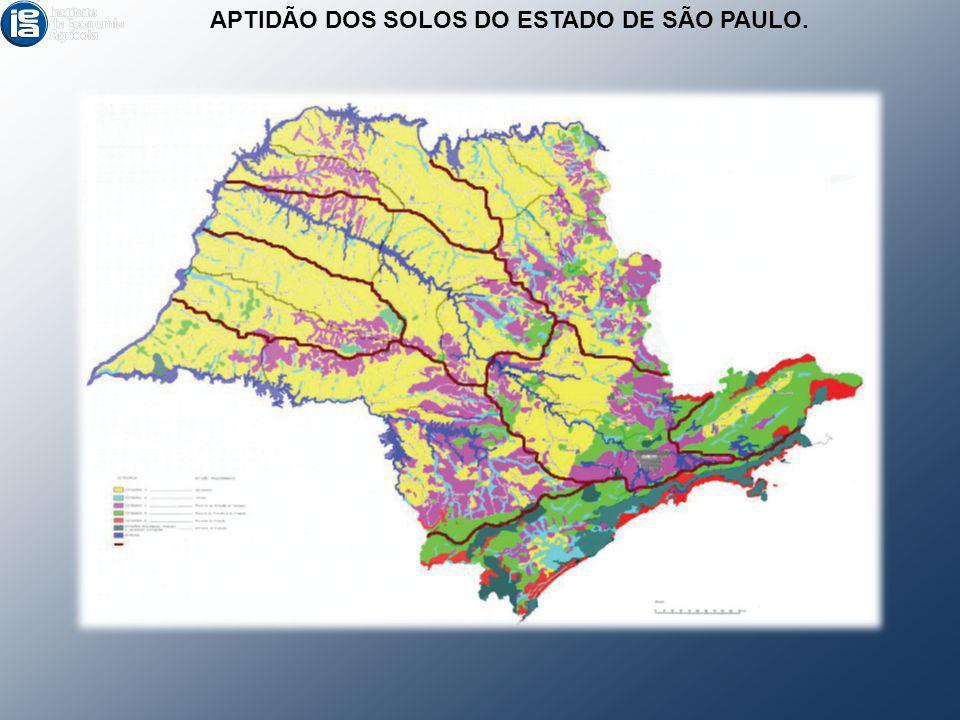RENDAS BRUTAS NA AGROPECUÁRIA PAULISTA produtos selecionados-2006 ( R$1000,00/ ha) Fonte: IEA