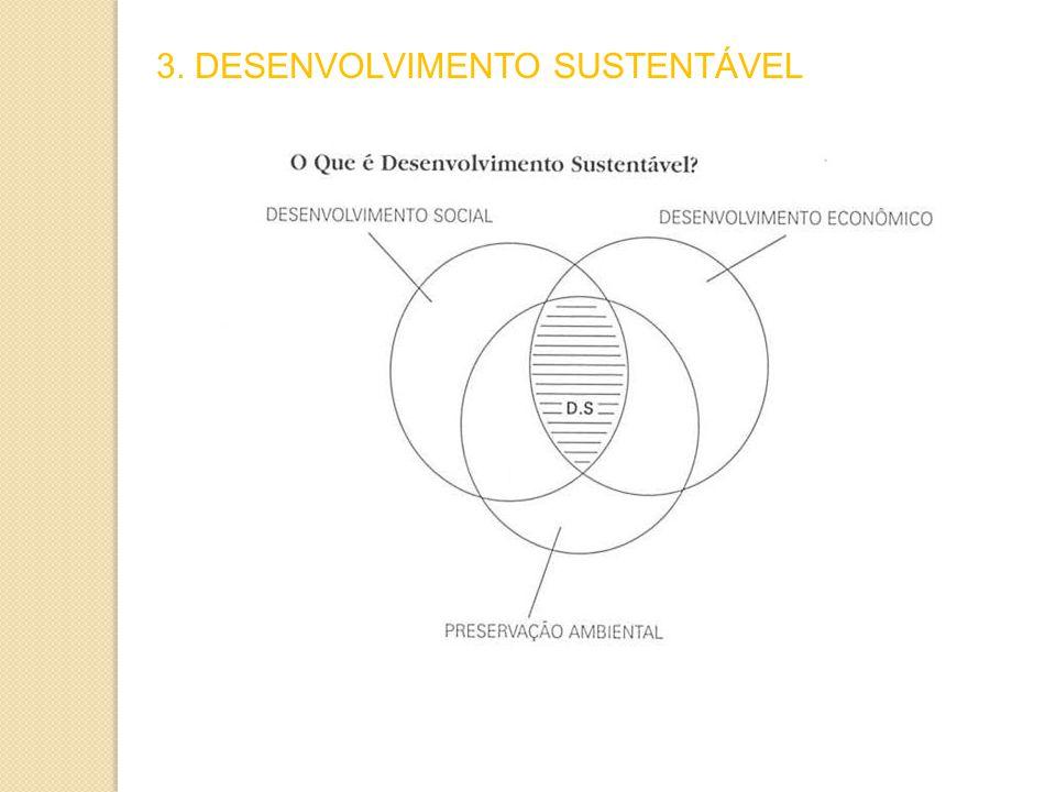 3. DESENVOLVIMENTO SUSTENTÁVEL