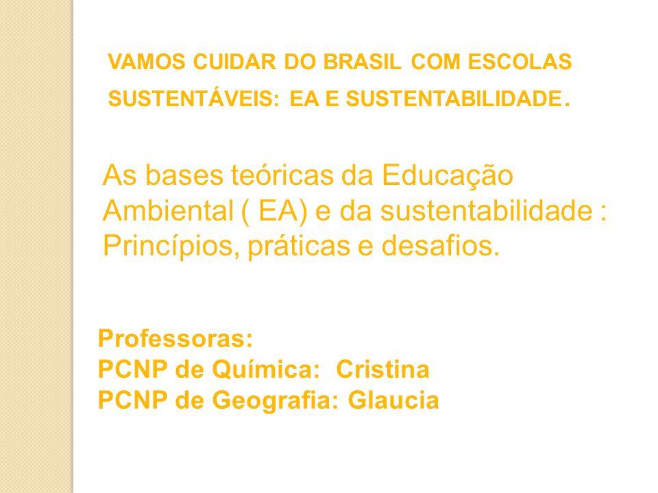 VAMOS CUIDAR DO BRASIL COM ESCOLAS SUSTENTÁVEIS: EA E SUSTENTABILIDADE.