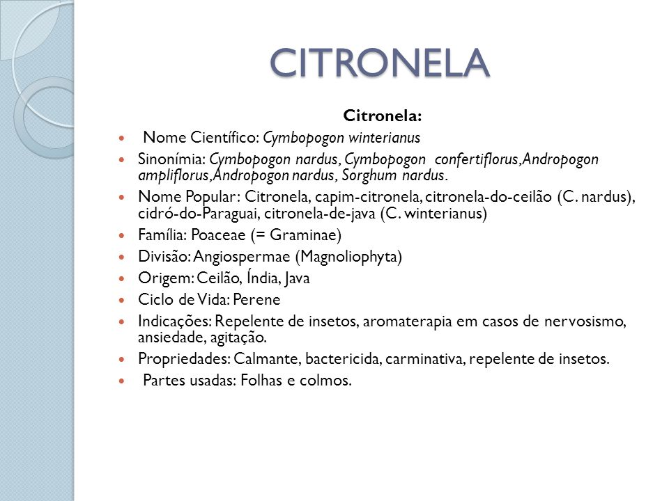 CITRONELA Citronela: Nome Científico: Cymbopogon winterianus Sinonímia: Cymbopogon nardus, Cymbopogon confertiflorus, Andropogon ampliflorus, Andropog