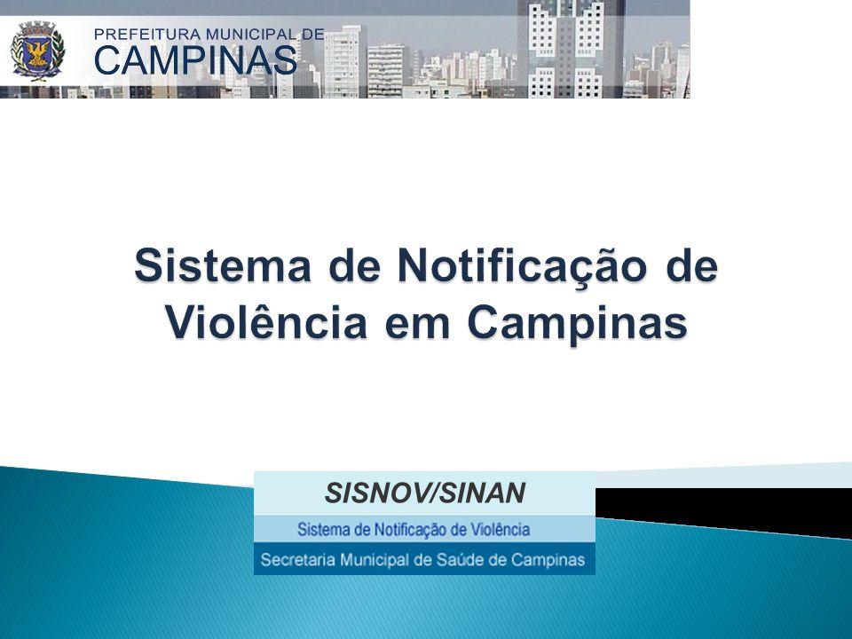 Sistema de Notificação de Violência em Campinas: 01/06/2005 a 31/12/2008 VDCCA Violência Sexual (Iluminar)