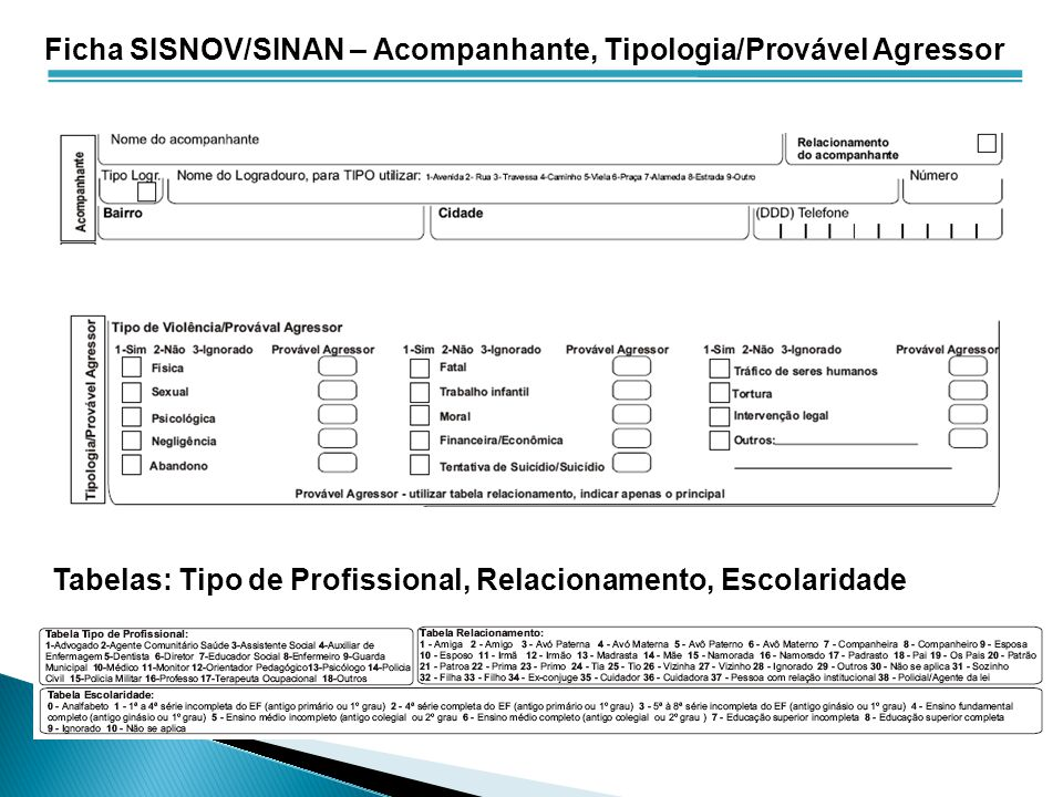 Ficha SISNOV/SINAN – Acompanhante, Tipologia/Provável Agressor Tabelas: Tipo de Profissional, Relacionamento, Escolaridade