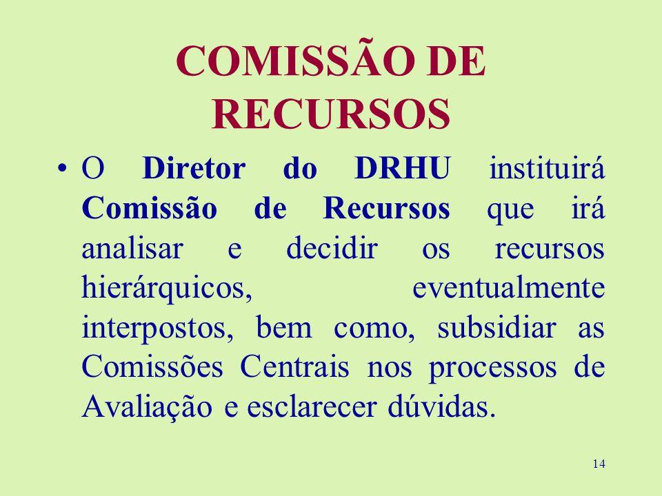 14 COMISSÃO DE RECURSOS O Diretor do DRHU instituirá Comissão de Recursos que irá analisar e decidir os recursos hierárquicos, eventualmente interpostos, bem como, subsidiar as Comissões Centrais nos processos de Avaliação e esclarecer dúvidas.