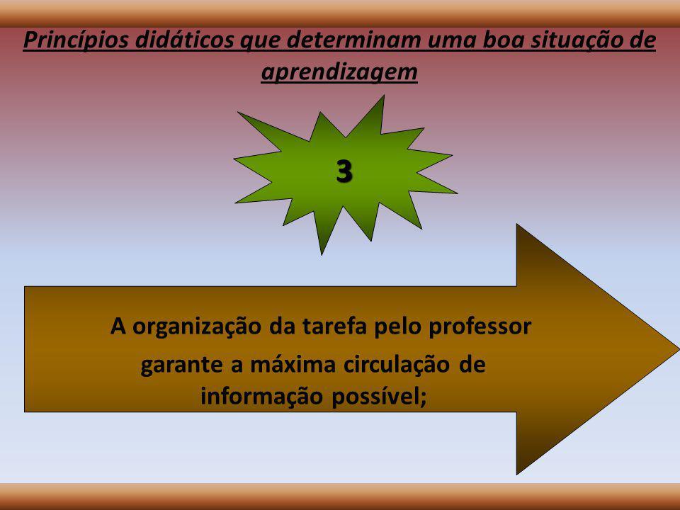 Princípios didáticos que determinam uma boa situação de aprendizagem Os alunos têm problemas a resolver e decisões a tomar em função do que se propõem produzir; 2