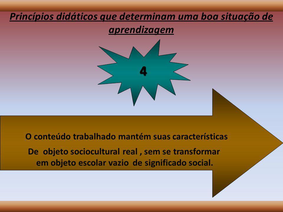 Princípios didáticos que determinam uma boa situação de aprendizagem A organização da tarefa pelo professor garante a máxima circulação de informação possível; 3