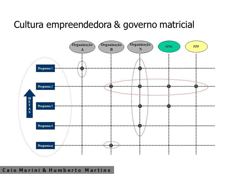C a i o M a r i n i & H u m b e r t o M a r t i n s Cultura empreendedora & governo matricial METASMETAS Programa 1 Programa 2 Programa 3 Programa 4 P