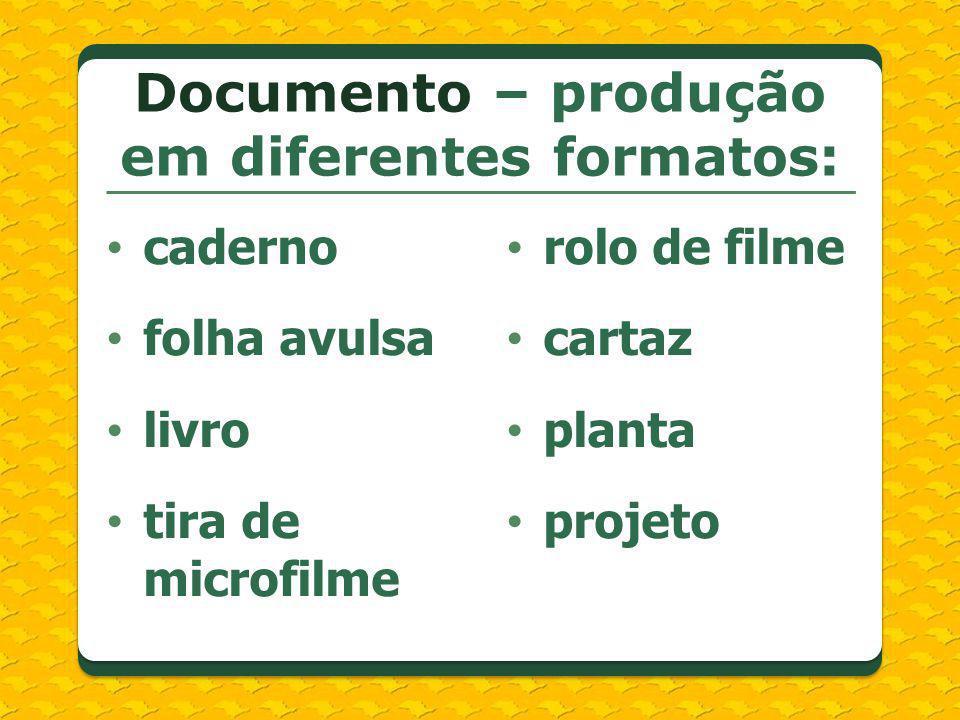 Documento – produção em diferentes formatos: caderno folha avulsa livro tira de microfilme rolo de filme cartaz planta projeto