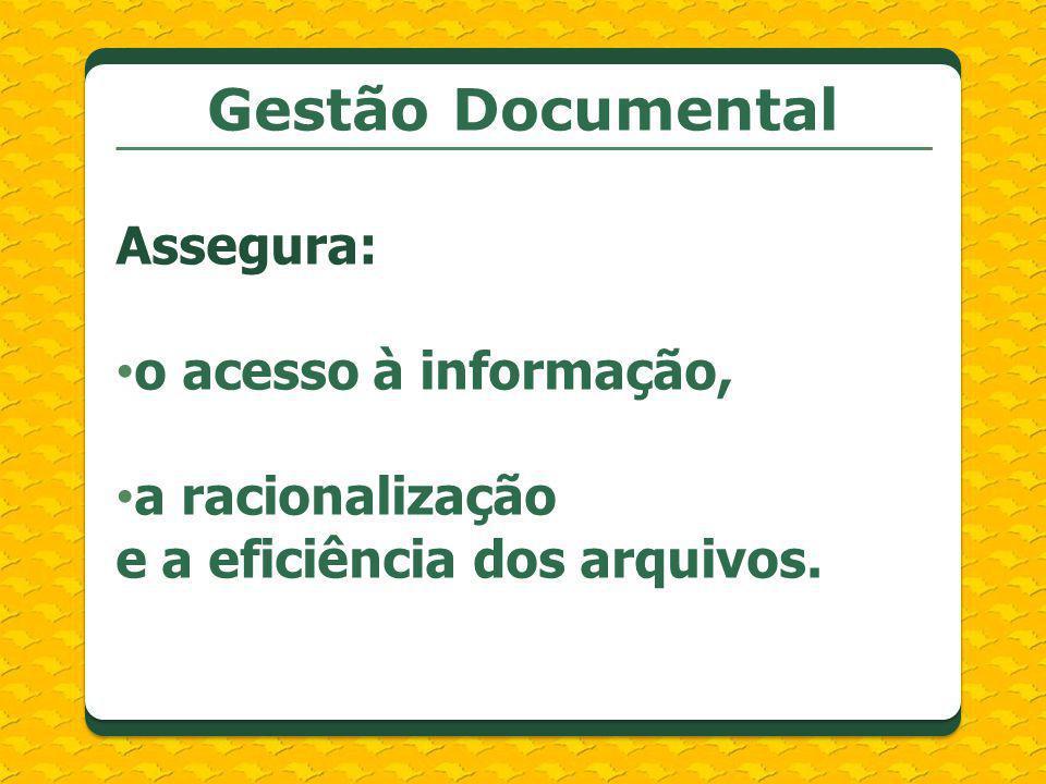 Assegura: o acesso à informação, a racionalização e a eficiência dos arquivos.